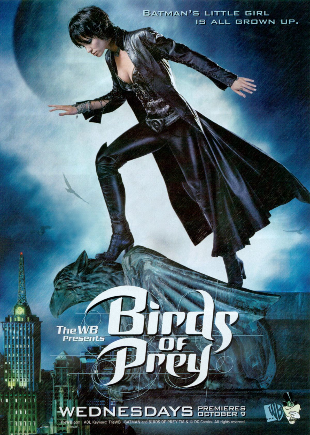 Birds of Prey  TV Series (2002–2003)