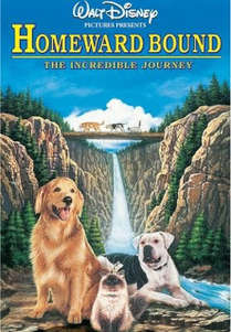 Homeward Bound / The Incredible Journey (1993)